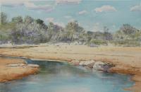 Kruger Park I