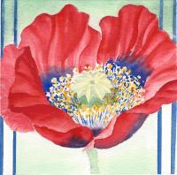 """Yuriko Kitamura, Poppy with Striped Ground, watercolour on paper, 4x4"""""""