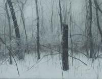 Matthew Tarini, Snowy Forest, oil on linen on dibond, 14 x 18""