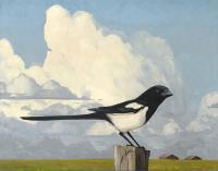 "Mitchell Fenton ""Magpie One"" 2014 oil on canvas 40 x 50"""