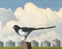 "MItchell Fenton ""Magpie Two"" 2014 oil on canvas 40 x 50"""
